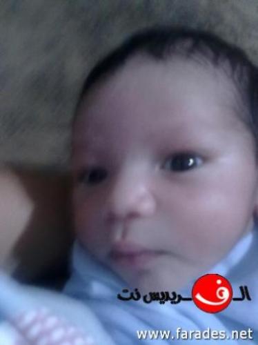 احمد عبد الهادي
