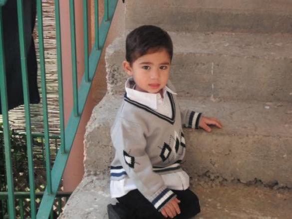 محمد علاء فحماوي