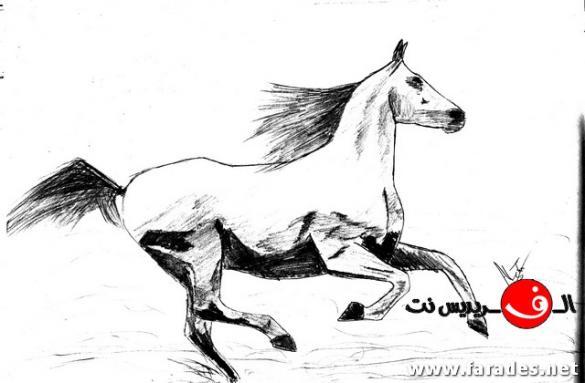 الجزء الثاني من رسومات الشاب علي شكري من الفريديس