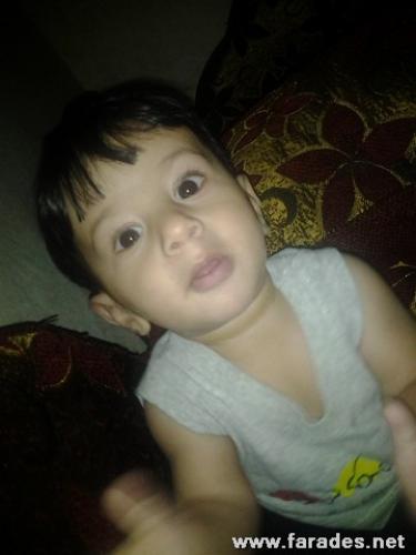 محمد أحمد طنجي