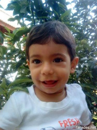 علي عمر ابو داهش