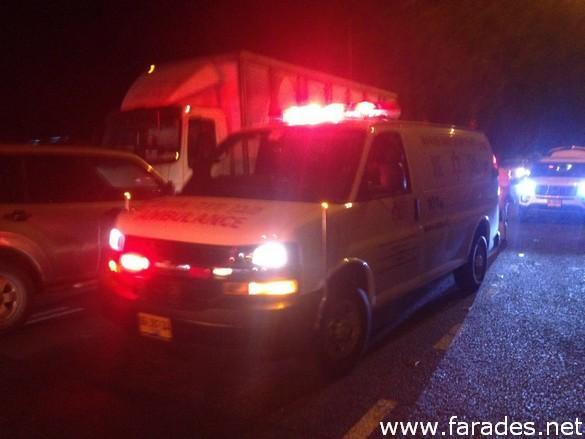حادث سلسلة بين عدة مركبات بسبب خنزير قرب الفريديس