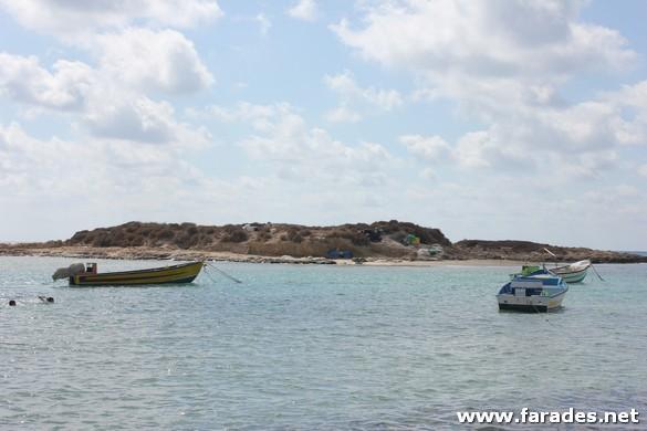 عيدية للصيادين: وزارة الزراعة تعلن عن حصولها على ميزانية لتعويضهم عن فترة التكاثر