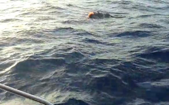 إنتشال جثة غريق مجهول الهوية قرب شاطئ عتليت