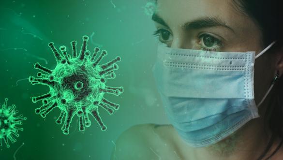 إحصائيات وأرقام حول فيروس كورونا في الفريديس