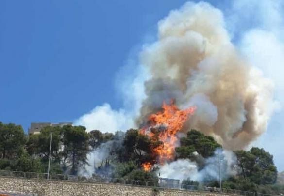 فيديو:حريق في منطقة الظهرات