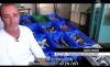 برنامج تلفزيوني يستعرض أوضاع سوق الأسماك في البلاد
