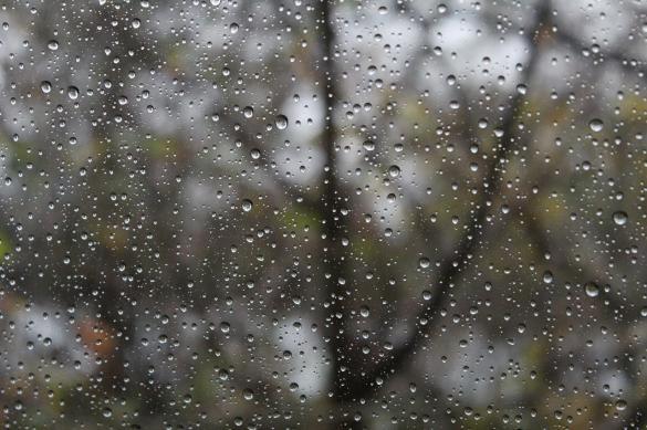 الأرصاد تتوقع: أمطار غزيرة مصحوبة بعواصف  الخميس